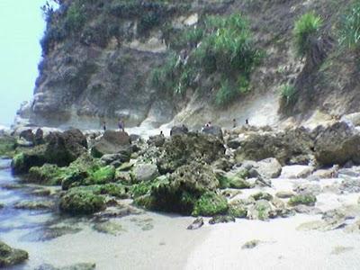 Bebatuan Pinggir Pantai